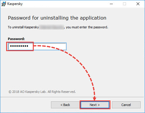 Entering the password to remove a Kaspersky application